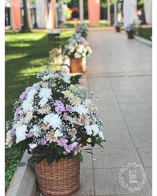 Lavender flowers for décor