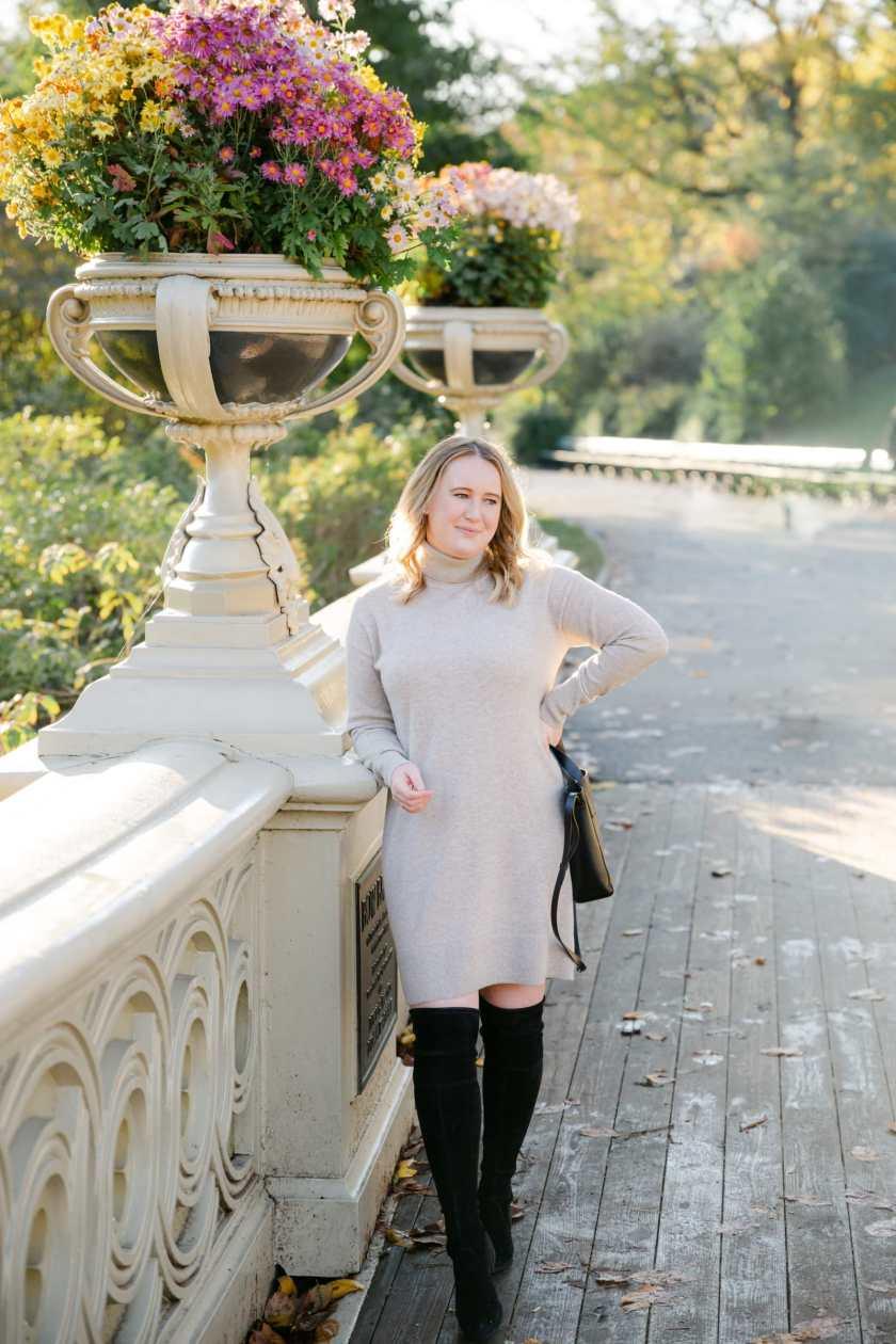 Everlane Cashmere Turtleneck Dress I wit & whimsy
