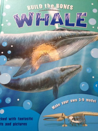 USborne build a whale book