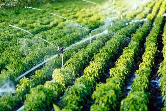 Governo adia cobrança pelo uso da água em indústrias por 120 dias