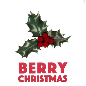 """Holly & Berry """"Berry Christmas"""" Square Greetings"""