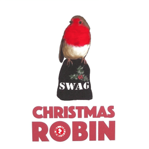 "Christmas Robin ""Swag"" Augmented Reality Square Greetings"