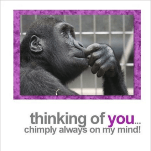 Fotofitz Thinking of You Chimp Greeting Card