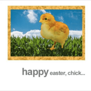 Happy Easter Chick Greeting Card Fotofitz