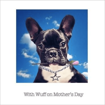 French Bulldog Posh Pawz Greeting Card
