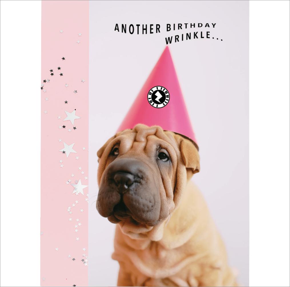 Wrinkly Pup Birthday Wrinkle AR Greeting Card