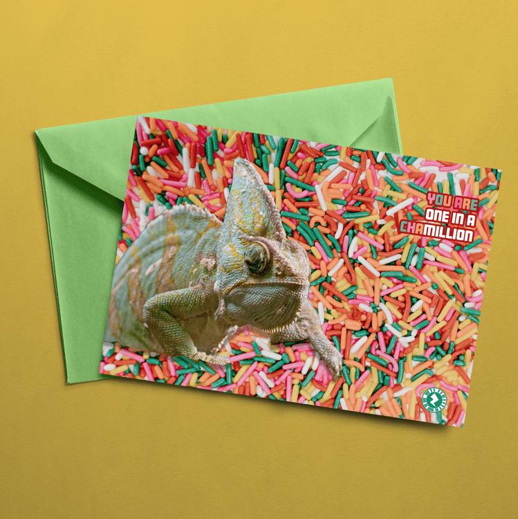 Chameleon-AR-Greeting-Card