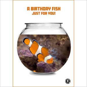 Birthday Fish AR Greeting Card
