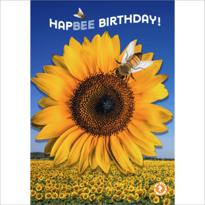 Sunflower Bees HapBee Birthday Card