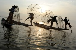 The fishermen of Inle Lake (Burma) (4)