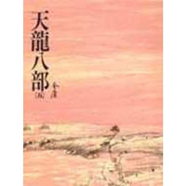 天龍八部(五)(平25)