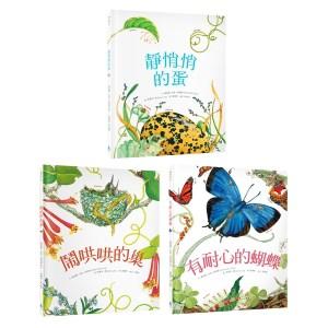 自然科核心素養最佳讀物 大自然繪本套書2(靜悄悄的蛋+鬧哄哄的巢+有耐心的蝴蝶)