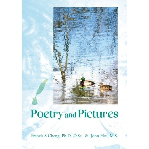 Poetry and Pictures
