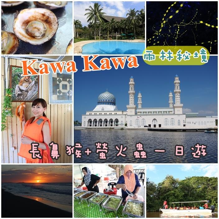 【沙巴景點】探訪長鼻猴和螢火蟲之旅,Kawa紅樹林夢幻螢火蟲,此生必看【13】