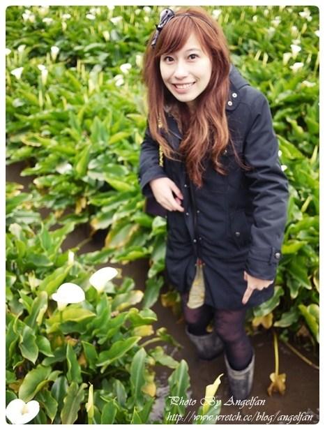 [玩♡台北-陽明山~竹子湖海芋盛開時] @小環妞 幸福足跡