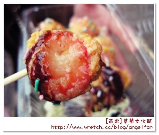[玩♡苗栗-什麼樣的草莓製品都不稀奇~草莓文物館、大湖酒莊] @小環妞 幸福足跡