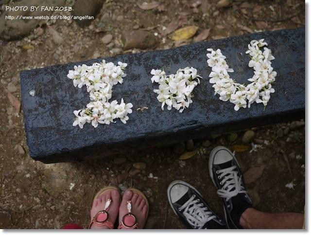 [彰化賞桐花]˙初見四月雪 ♥ 挑水古道+藤山步道(4/7花況) @小環妞 幸福足跡