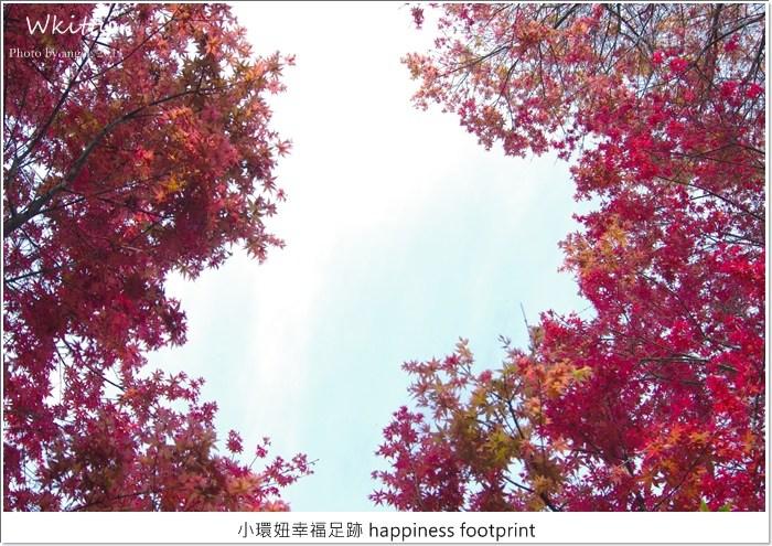 台北 賞楓,台北奧萬大,台北奧萬大 2015,賞楓,陽明山 @小環妞 幸福足跡