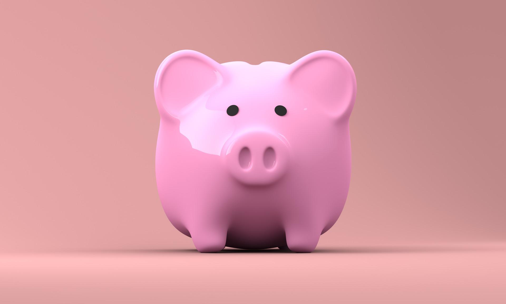 Sparschwein spart Geld für Videoproduktion