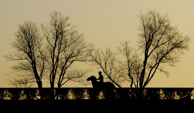 SUNDAY APRIL 17, 2016--LEXINGTON, KY-- Jockeys and horses are up early morning warming up and prepping for the last day of races for the weekend at the Keenland race tracks.