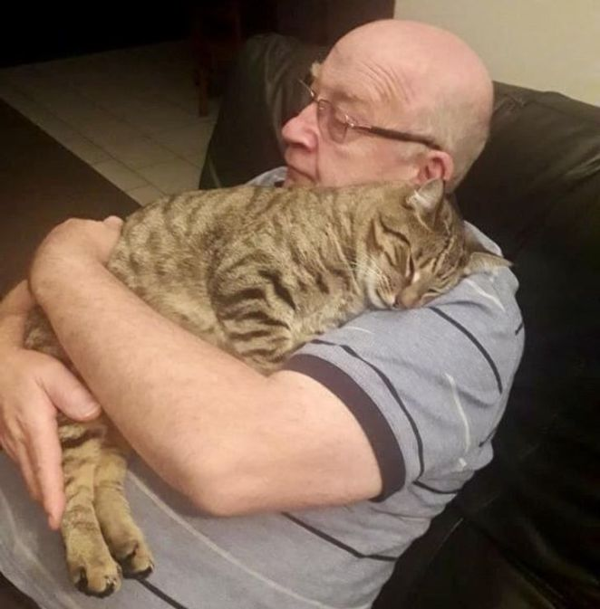 """17 Pets Who Found Their Own Way to Say """"I Love You Human"""""""