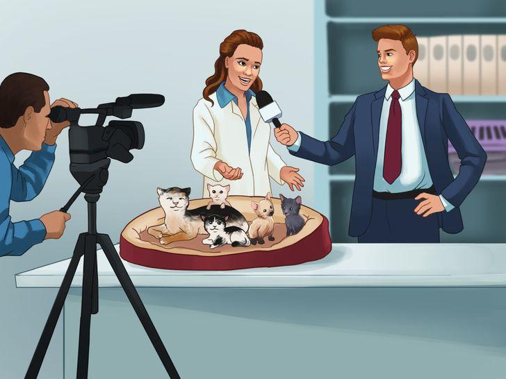 """La emotiva historia de por qué se llama popularmente """"Karen"""" a las mujeres que tienen gatos"""