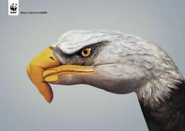 Kampania Podaj pomocną dłoń naturze - Give a hand to wildlife - właczoszczedzanie.pl - @WWF