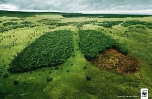 Według raportu WWF ponad połowa obszarów przyrodniczych w UE chroniona jest tylko na papierze
