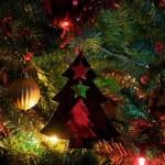Jaką wybrać choinkę na Boże Narodzenie?