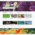 Światowa Sieć Informacji o Bioróżnorodności - Global Biodiversity Information Facility (GBIF)