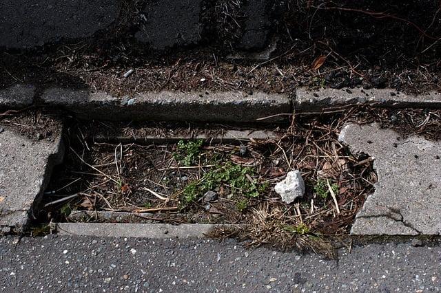 Zanieczyszczenia gruntu na której stoi nieruchomość mogą mieć ogromny wpływ na nasze zdrowie
