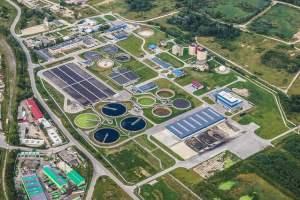 Anammox - mikroorganizmy zdolne do beztlenowego utleniania amoniaku pozwolą przyspieszyć proces oczyszczania ścieków komunalnych