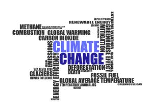 Paleoklimatolodzy ostrzegają że ocieplenie klimatu może następować nierównomiernie
