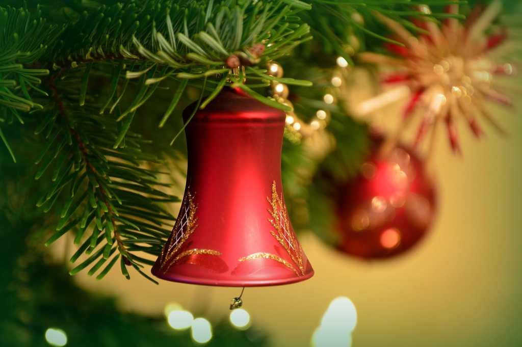 Idea wypożyczania świątecznego drzewka może pomóc w walce ze smogiem