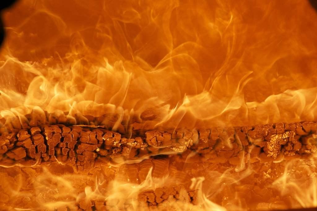 Spalanie drewna nie jest zieloną energią i nie ograniczy emisji CO2