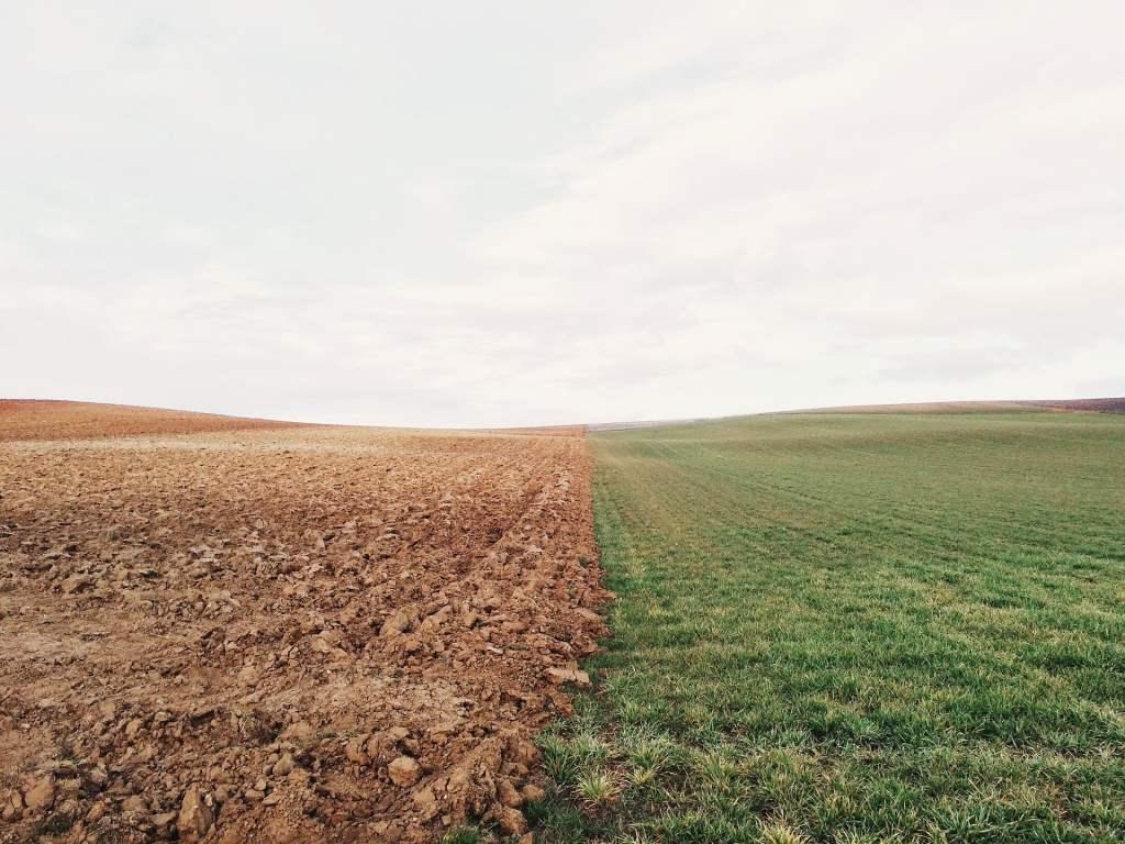 W rolnictwie potrzebne są innowacje, które pozwolą efektywniej zarządzać glebą