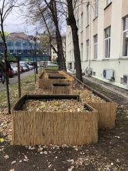 Na terenie Akademii Górniczo-Hutniczej w Krakowie powstało osiedle domków dla jeży