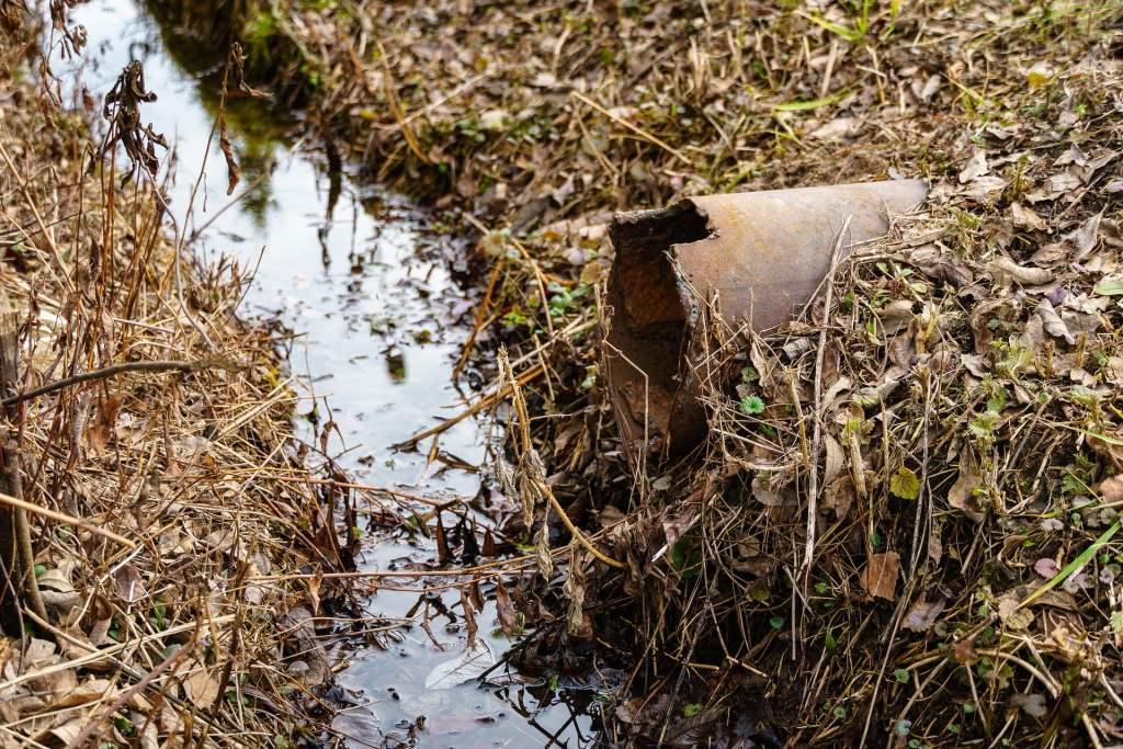 Małe, hydrofitowe oczyszczalnie ścieków są opłacalne na wsi i w niewielkich miejscowościach