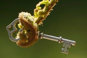 Zielona gospodarka czyli green economy