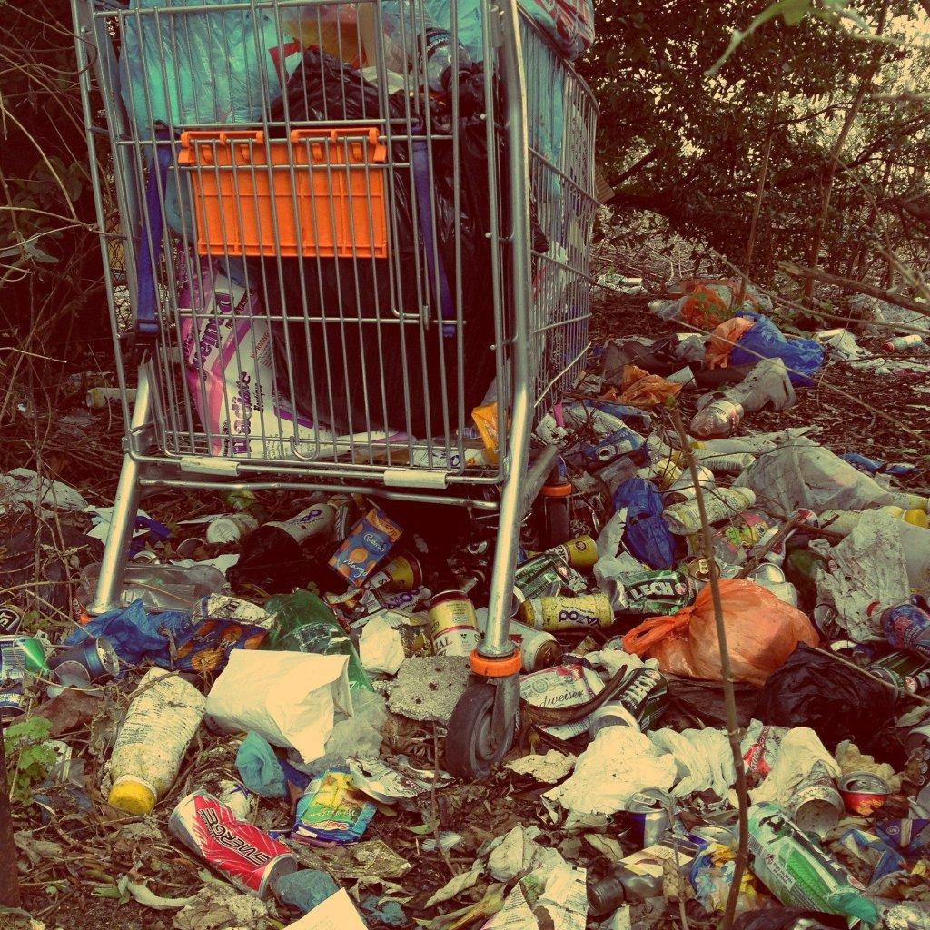 Dzikie wysypiska śmieci stanowią poważny problem estetyczny i środowiskowy