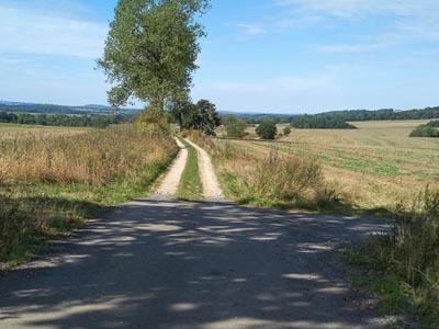 Droga do pól kończy się w polu