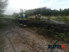 Hubert - wlkp112.pl