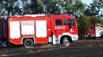 P1150055 (Copy)