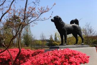 Dzielny pies z Osu