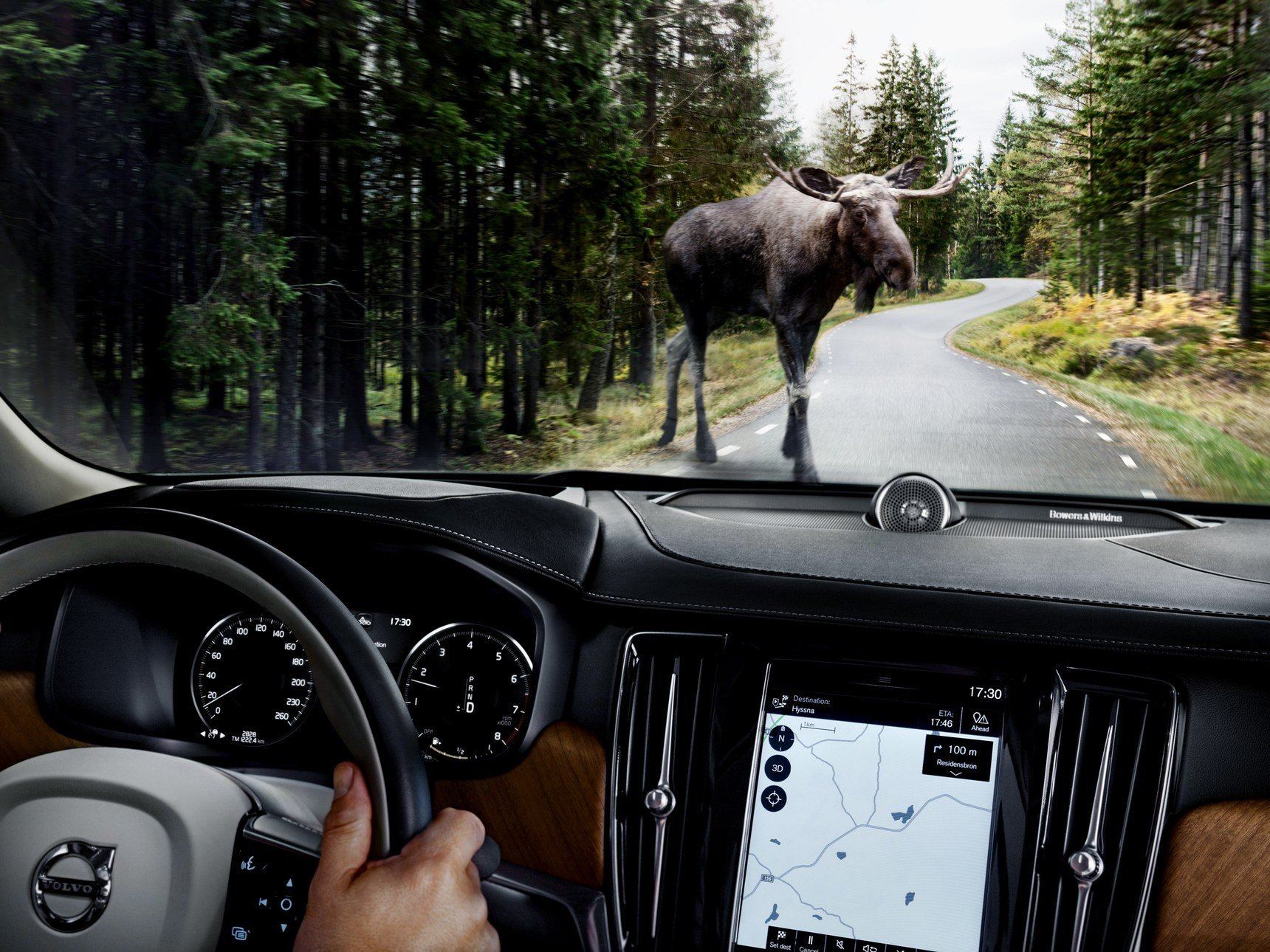 New Volvo S Large Animal Detection System Spots Moose Deer On This Month