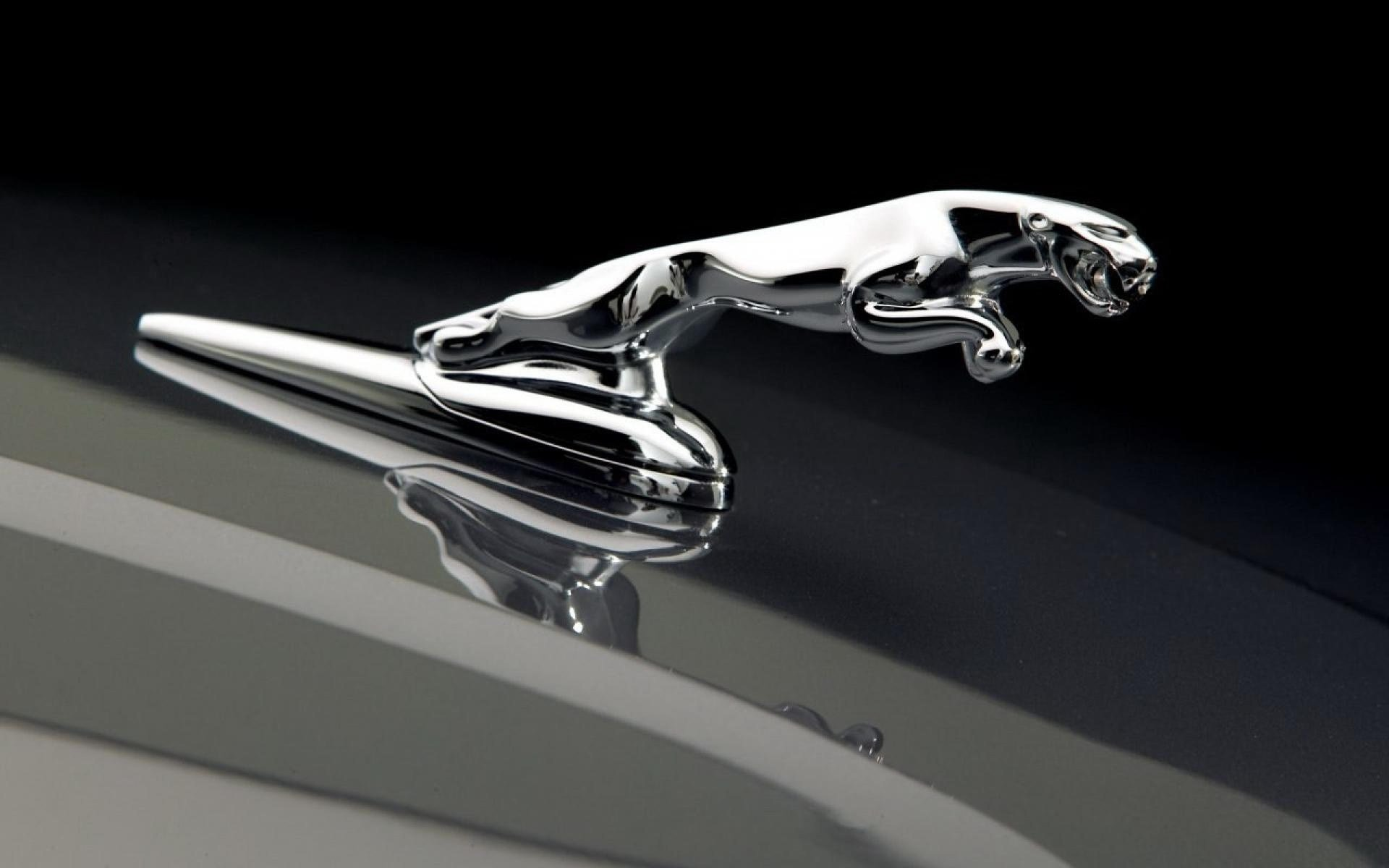 New Jaguar Car Logo Photo Hd Wallpapers On This Month