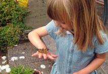 Butterfly Pi 2