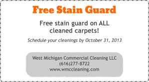 Free Stain Guard Special