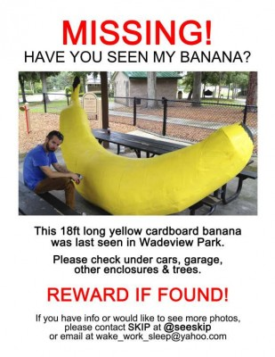 lost banana flyer2