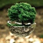 Globus tritt dem Bund ökologischer Lebensmittelwirtschaft e.V. (BÖLW) bei